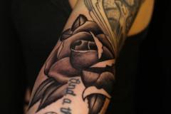 013-Rose-1