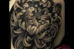 10-Chrysanthimum